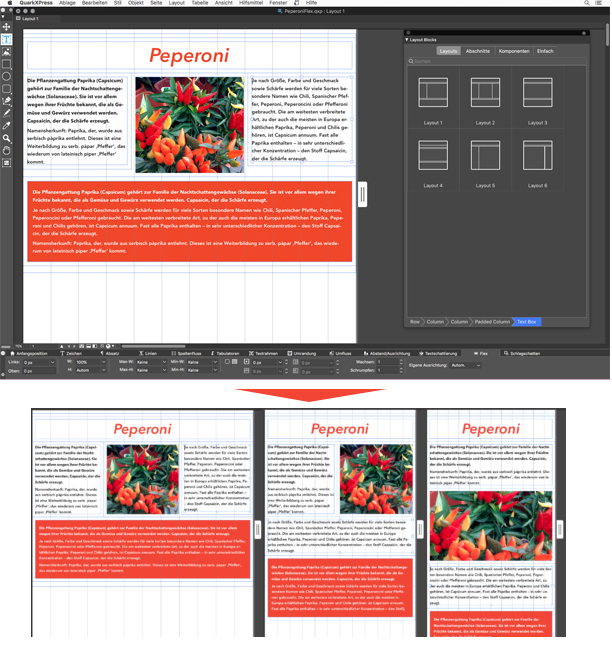 20191112 quarkxpress2019 flex layout